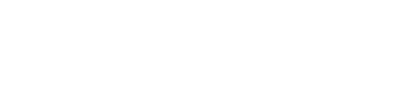 Bespoke Minibus | Sprinter Minibus | Sprinter Van Shuttle Conversions